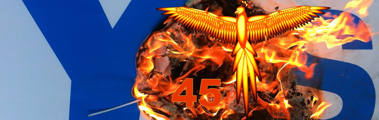 Phoenix45